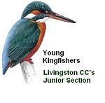 young_kingfishers