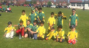 2016 Kwik Cricket Festival2